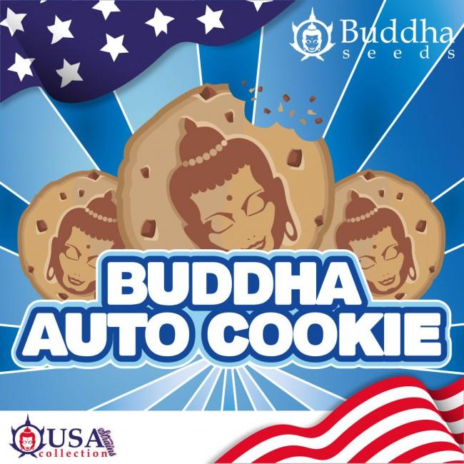 Buddha Auto Cookie