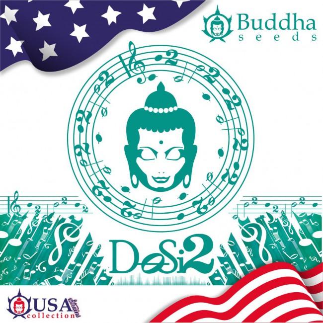 Buddha DoSi2
