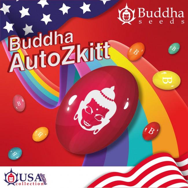 Buddha Auto Zkitt